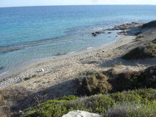 Sandy Cove Behind Sbc North Cyprus Estate Agents